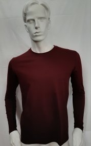 Men's Crewneck Sweater - long sleeves - Art. 02074167